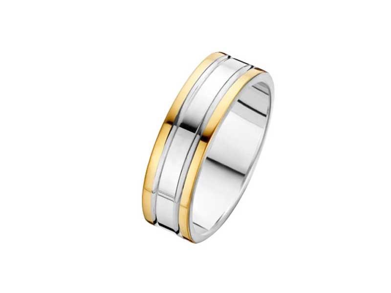 zilver-met-gouden-ring-fjory